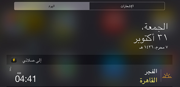 Ela-Salaty_Widget_iPad
