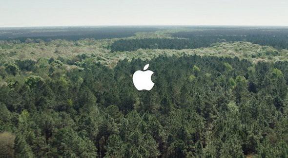 Green China Apple