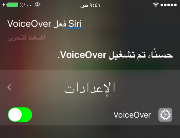 activate-voice-over