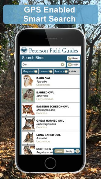 Guide to Birds